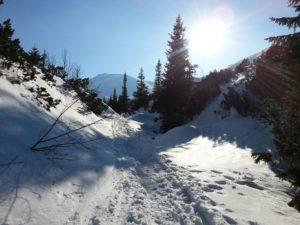 Bezglutenowe Święta W Górach w Białym Dunajcu - Moje Tatry